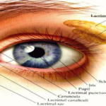 Magical Mixture For Improved And Strengthened Vision