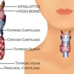 13 Silent Signs of a Thyroid Problem