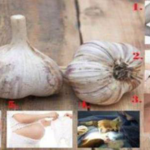 Warning: Stop Using Garlic If You Are in These 6 Types of People