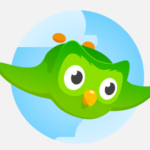 Duolingo launches paid subscriptions as it experiments with new ways to monetize its service