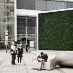 This 'tree' has the environmental benefits of a forest